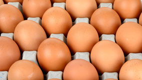Close up egg in packet background texture Stock Photography