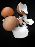 Close-up of egg shells Royalty Free Stock Photo