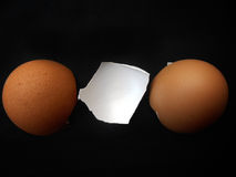 Close-up of egg shells Stock Photo