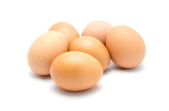 Close up of an egg  Stock Photography