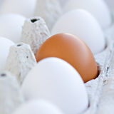 Close up of eggs Royalty Free Stock Photography