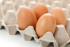 Close up of  eggs on egg rag Stock Images