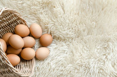 Close up eggs in old basket on white wool Royalty Free Stock Photography