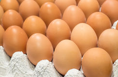 Close up eggs in the package Stock Photography
