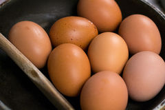 Close up of eggs in a pan Stock Photography