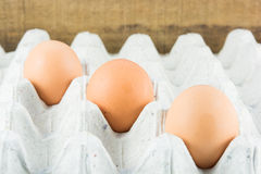 Close Up eggs in paper tray Royalty Free Stock Image