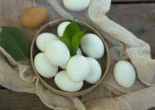 Close up of eggs in sieve, top view of eggs on gauze. Chicken Egg. Hen eggs basket Stock Image