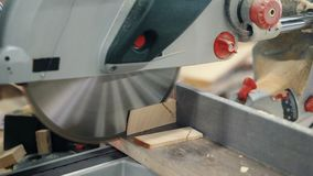 Close-up of circular saw sawing wood in workshop and male hands moving timber stock video