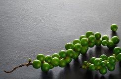 Close up em grãos de pimenta do verde do resh na pedra cinzenta da ardósia, espaço fotografia de stock