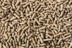 Close-up em pelotas da alimentação Imagem de Stock