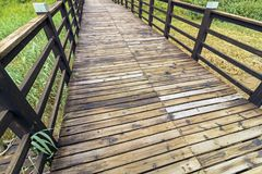 Close up Empty Boardwalk Patterns and Textures. Close up wooden boardwalk with pattern and textures leading through green wetland vegetation at St Lucia Estuary Royalty Free Stock Photo