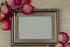 Empty photo frame with rose flower and petals. Close-up of empty photo frame with rose flower and petals royalty free stock photography