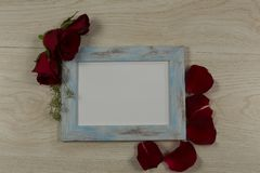 Empty photo frame with rose flower and petals. Close-up of empty photo frame with rose flower and petals royalty free stock photo