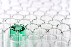 Close-up of empty test tubes, one green liquid Stock Photo