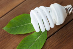 Close up of energy saving lightbulb and green leaf Royalty Free Stock Image