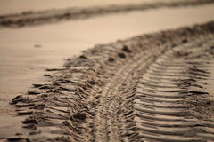Close-up of engine tyre trace on a sandy beach in early morning Royalty Free Stock Images