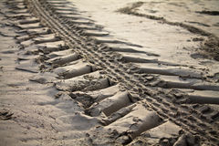 Close up of engine tyre trace on a sandy beach in early morning Stock Images