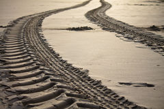 Close up of engine tyre trace on a sandy beach in early morning Stock Photography