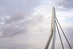 Close up of Erasmus Bridge in Rotterdam Royalty Free Stock Photography