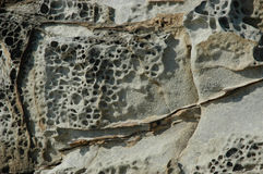 A close-up of eroded rocks. Close-up of eroded rocks at the beach. The rocks show cracks and weathering. They are grey with rust coloured markings royalty free stock photo