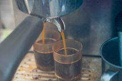 Close up of espresso pouring from coffee machine to shot glass. Professional coffee brewing royalty free stock photo