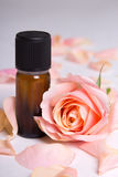 Close up of essential oil and rose petals over grey. Background royalty free stock image