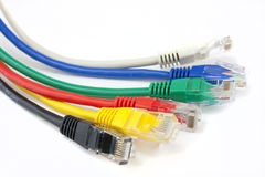 Close up ethernet network cables Royalty Free Stock Photos