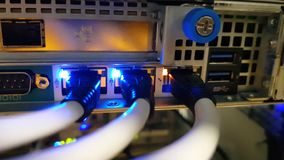 Close up of a ethernet UTP cables connected to the router stock video footage
