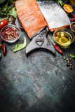 Close up of excellent salmon fillet with oil, spices and seasoning for tasty cooking Stock Photography