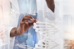 Close up of exquisite genome model. Meticulous work. Professional doctor touching genome model with fingers while being extremely careful royalty free stock photo