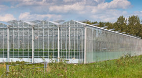 Close up of the exterior of a modern greenhouse. Close up of a modern Dutch greenhouse complex with open glass panels Royalty Free Stock Photo