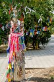 Close-up extremo de uma árvore de azevinho budista fotos de stock royalty free