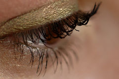 Close-up of an eye. Close-up of a brown eye with green eyeshadow Stock Images