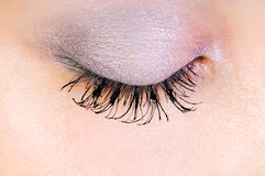 Close up of eye Royalty Free Stock Images