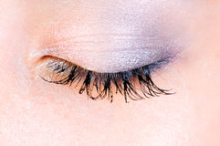 Close up of eye Royalty Free Stock Photo