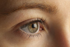 Close-up of eye Royalty Free Stock Image