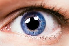 Close-up eye. Close-up of an eye with blue colour of eyes Stock Photos