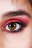 Close-up of eye. Close-up of beautiful womanish eye Stock Photography