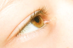 Close up of eye Stock Photos