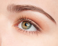 Close-up eye of beauty young woman Royalty Free Stock Image