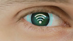 Close-up of eye with computer text overlayed. Zoom in centr. sign of Wi fi. Close-up of eye with computer data and text overlayed. Zoom in centr. sign of Wi fi stock footage
