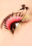Close Up Of Eye With False Lashes. Close Up Of Eye With Pink False Lashes royalty free stock photo