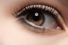 Close-up eye with fashion light make-up, long eyelashes. Healthcare and cosmetics. Part of female face. Close-up of woman's eye with natural makeup and long royalty free stock image