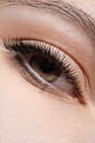 Close-up eye with fashion light make-up, long eyelashes Royalty Free Stock Image
