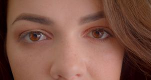 Close-up eye-portrait of pretty caucasian brunette girl watches into camera calmy isolated on white background. Close-up eye-portrait of pretty caucasian stock footage