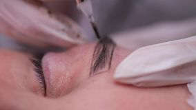 Close-up. Eyebrow, on which a specialist inject a needle and apply a pigment. Permanent makeup. 4K Slow Mo. Close-up. Eyebrow, on which a specialist inject a stock video footage