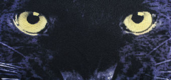 Close up on the eyes of a black panther on fabric. Stock Image