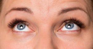 Face woman with eyes and eyelashes. Close-up face of beautiful young woman with beautiful blue eyes and big pretty eyelashes and eyebrows. Macro of human eye Stock Image