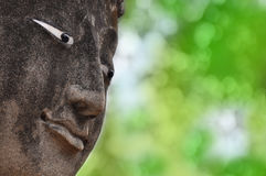 Close up face of Buddha Royalty Free Stock Images