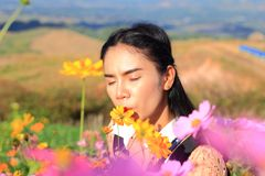 Close up face,caucasian woman and expression happiness,pretty girl with pink comos flowers. Woman wearing dress relaxing and happy with smelling flower in royalty free stock image
